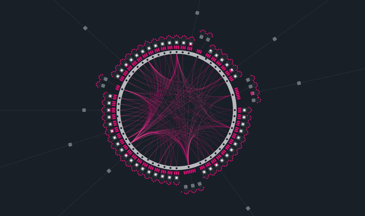 polkadot-network